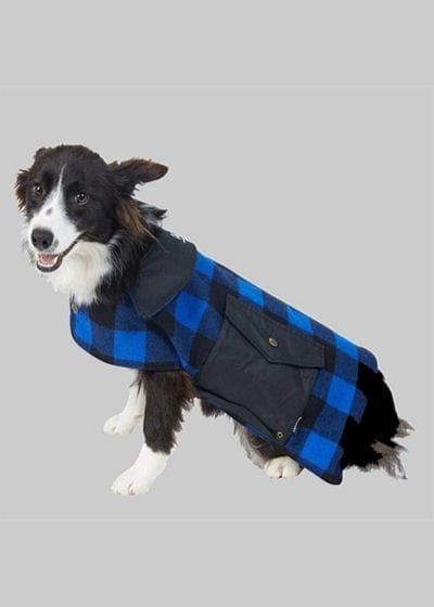 Swanndri Dog Coat blue black check - Ecowool